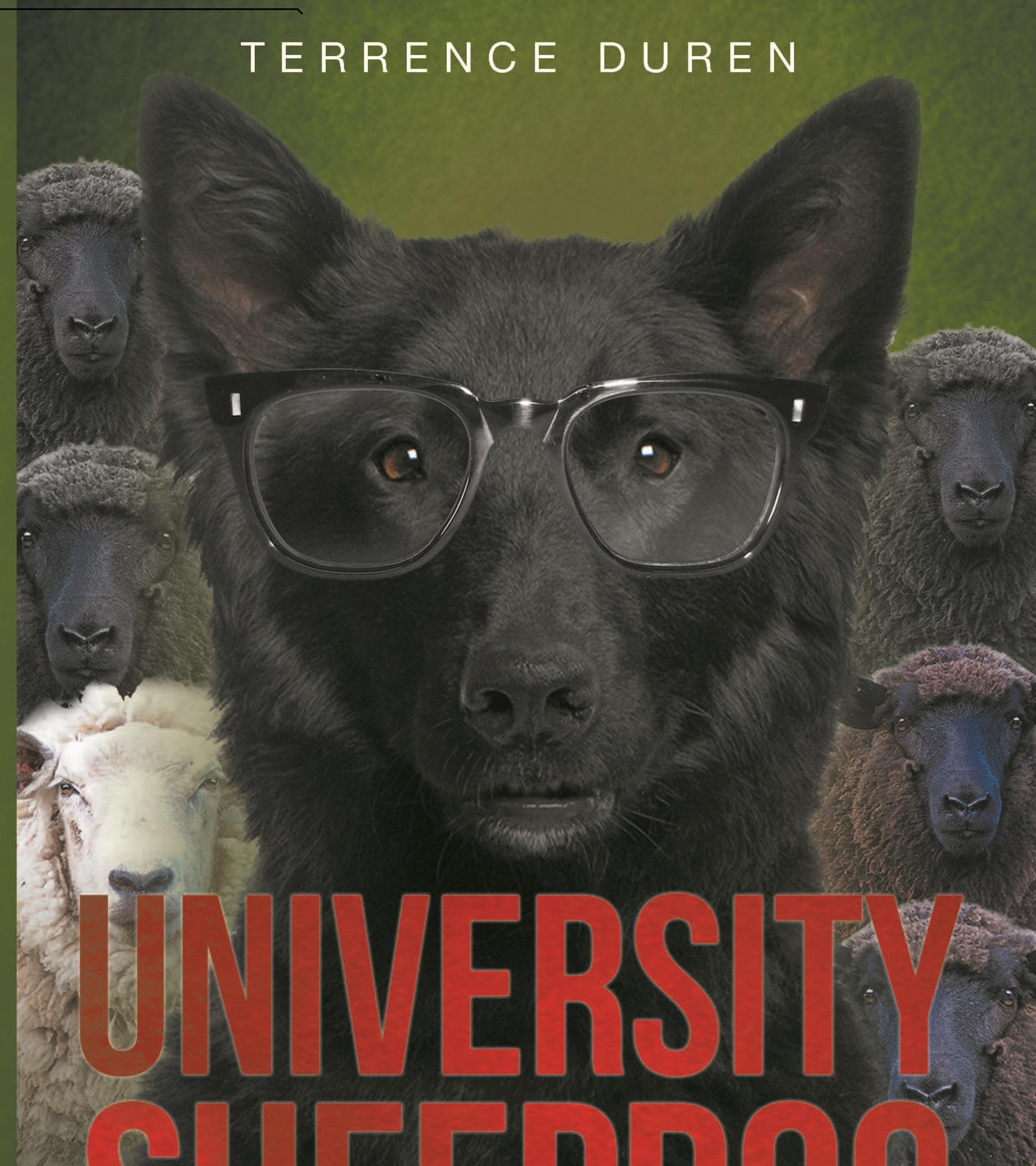 University Sheepdog in Westwood CA by Terrence Duren